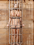 Caged Pig