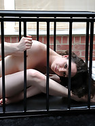 Nude Brunette Caged, pic 6