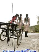 Preparing ponygirls, pic 14