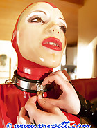 Chastity and steel harness, pic 4