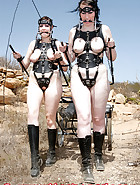 Two ponygirls rides, pic 6