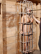 Caged Pig, pic 14