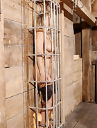 Caged Pig, pic 8