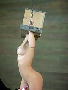 Hook, Box & Ringer, pic 2