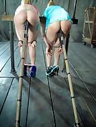 Flesh Circus, pic 12
