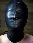 Whipped, Bound and Boxed, pic 12