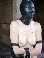 Whipped, Bound and Boxed, pic 13
