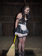 The Maid, pic 6
