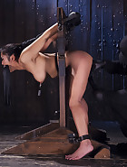 Hot Asian, Hard Steel, pic 11